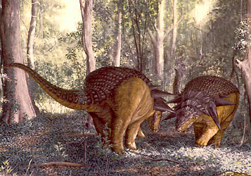Two Edmontonia males in a shoving contest of strength